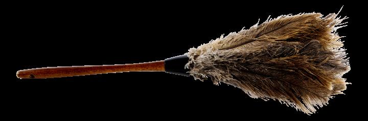 Prima strutsinsulkainen pölyhuiska